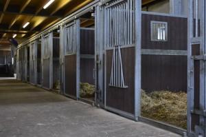 Individuele Boxen Paardenpension De Wildtshof
