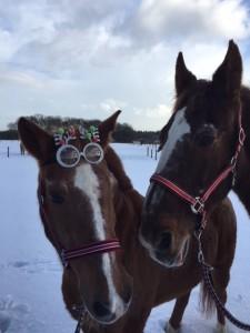2017 kerst Remon IMG_7416